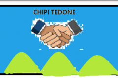 Chipi-Tedone-